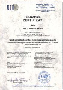 Sachverständiger für Schimmelpilzsanierung Brück GmbH